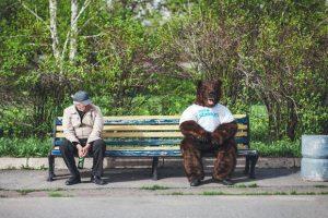 Im-siberian-on-bench