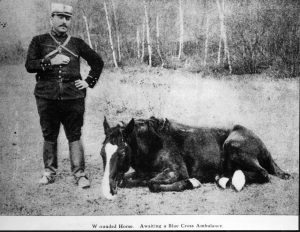 French-soldier-with-horse