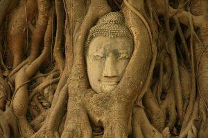 thailand5-134